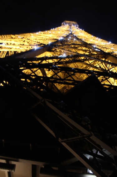 I did not know the tower sparkled at night, but after virtually no wait at all, I found myself at the top of it looking down over Paris at night. I could not see myself starting our stay in Paris in any other way. It was perfect.
